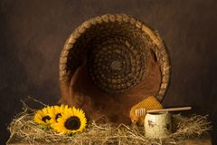 Open beehive and sunflowers stock photos