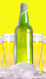 Open beer bottle with ice and foam Royalty Free Stock Image