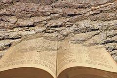 Open bible bark background Royalty Free Stock Image