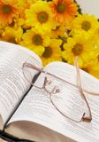 Open bible with flowers. Open Bible with glasses and spring flowers in the background Stock Images