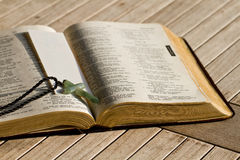 Open Bible. The Holy Bible open up in the centre stock photos