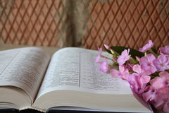 Open Bible and lilac flowers. Open Bible and a fresh lilac flowers on a brick wall background Stock Photo