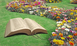 Open bible spiritual tranquility paradise park. Photo of  an open bible with paradise park and flowers ideal for spiritual tranquility peace,marriage vows etc Royalty Free Stock Photography