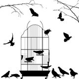 Open bird cage and birds. Silhouettes over white background Royalty Free Stock Images