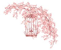Open bird cage among blooming sakura vector design Stock Photo