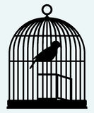 An open birdcage and bird Royalty Free Stock Photo