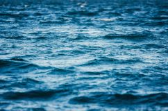 In the open sea. Waves in the dark water. Royalty Free Stock Photos