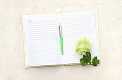 Open Blank  Book Stock Photography