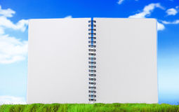 Open blank note book on green grass Stock Image
