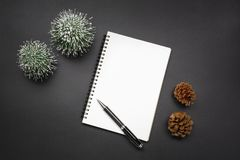 Open blank notebook, pen, pine cones and mini christmas tree in. Black tones. Festive Christmas and New Year concept royalty free stock photos