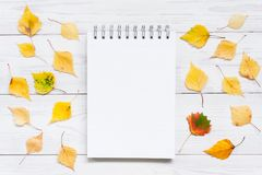 Open blank notebook on the white textured table decorated with autumn leaves stock photo