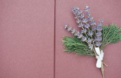 Open blank pages of scrapbook with bunch of lilac lavender and green branches on the right side royalty free stock images
