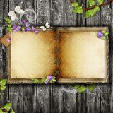 Open blank vintage book Royalty Free Stock Images
