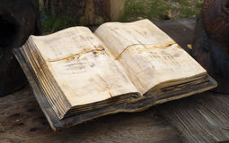 An open blank wooden book Royalty Free Stock Photo