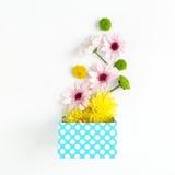 Open blauwe giftdoos met verschillende chrysanten op witte backgr Stock Foto's