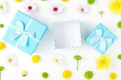 Open blauwe giftdoos met verschillende chrysanten op witte backgr Stock Afbeeldingen