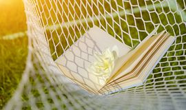 Open blue book in a hammock with a white flower stock photography