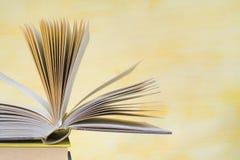 Open boek, Royalty-vrije Stock Afbeelding