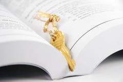 Open boek en gouden sleutel Stock Fotografie