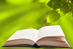 Open Boek en Groene Bladeren Stock Afbeelding