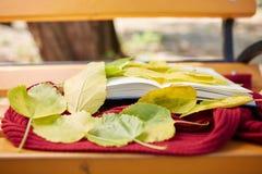 Open boek en rode sjaal op de bank in de herfstdag Royalty-vrije Stock Afbeelding