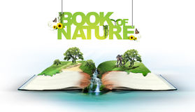 Open boek met groene aard Stock Foto's