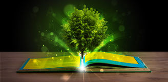 Open boek met magische groene boom en stralen van licht Stock Afbeeldingen
