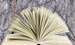 Open boek op de achtergrond van de berken Royalty-vrije Stock Foto