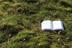 Open boek op gras Stock Foto