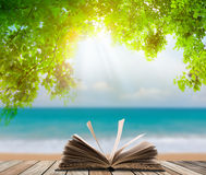 Open boek op houten vloer met groen gras en blad over strandoverzees Stock Afbeelding