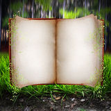 Open book. An open book with blank pages surrounded by leaves with a backdrop of a blurred forest.  Concept for fairy tales Stock Photo