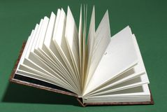 Open book. The open book and green background Stock Images