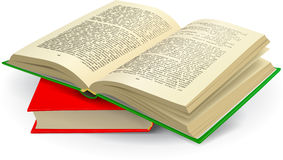 Open Book. Illustration. Two books Stock Images