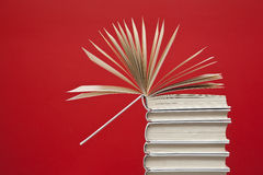 Open book. On top of a group of white books Royalty Free Stock Image
