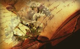 Open book and apple blossom Royalty Free Stock Image