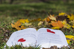 Open book in an  autumn garden with red hearts Stock Photos