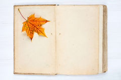 Open book and autumn  leaf Royalty Free Stock Image