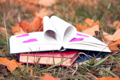 Open book in autumn leaves. Knowledge is power. Education. Enlightenment. Love Stock Images