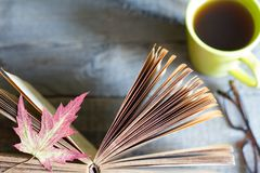 Open book autumn leaves tea and glasses abstract background on wooden boards stock image