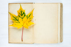 Open book and autumnal maple leaf Stock Images