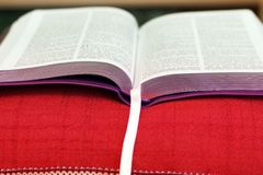 Open book Bible. The book of life.  stock photo