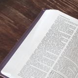 Open book Bible. The book of life.  royalty free stock images