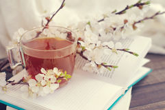 Open book, blossoming apricot branch and a cup of tea Royalty Free Stock Photography