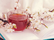 Open book, blossoming apricot branch and a cup of tea Stock Photography