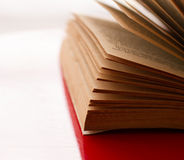 Open book. Close-up royalty free stock photo