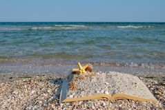 Open book sand seashells sea star beach sea shore blue sky white wave summer weekend vacation Stock Images