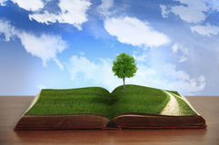 Open book with country views Stock Photography