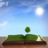 Open book with country views Royalty Free Stock Photo