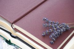 Open books cover and bunch of dry lavender on it. Open book cover in boysenberry color and bunch of dry lavender on it royalty free stock photos
