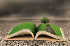 Education on green tree over dry land. Open book with 3D green tree illustration on top of dry land with stormy clouds background Royalty Free Stock Photo
